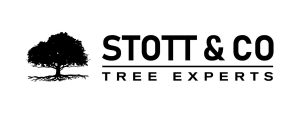 Stott & Co - Tree Experts